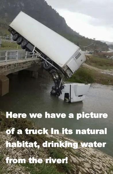 truck[1148]