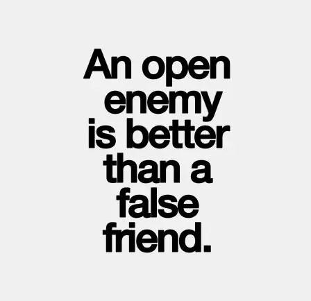 fake friends sayings