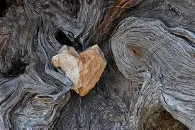 Heart Softener
