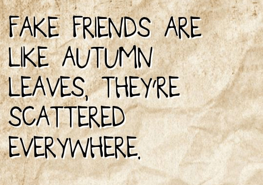 quotes about shady friends