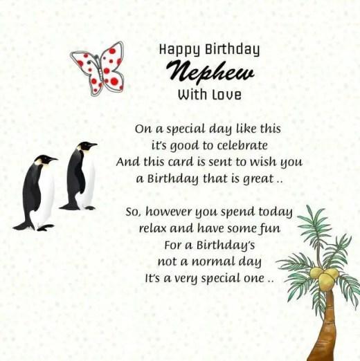200+ Perfect Wishes To Say Happy Birthday Nephew