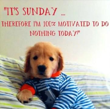 145+ Inspirational Sunday Quotes [Absolutely Stunning] - BayArt
