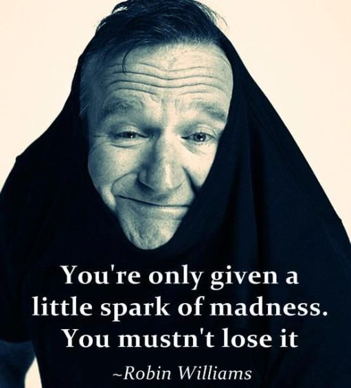 robin williams inspirational quotes