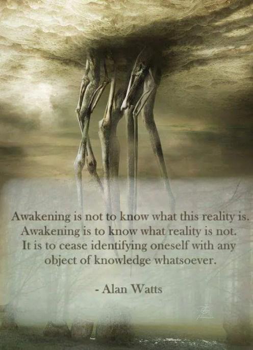 alan watts quotes awakening