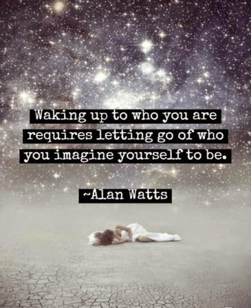 alan watts quotes waking up