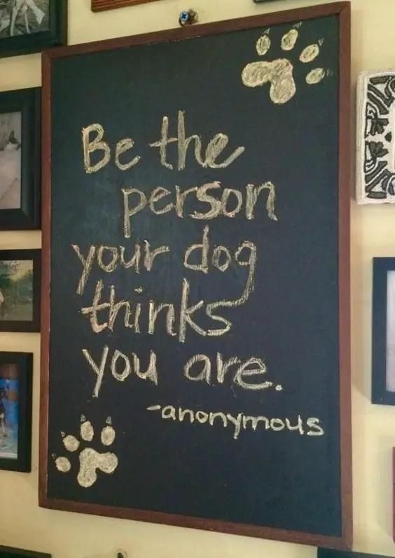 dog quotes inspirational