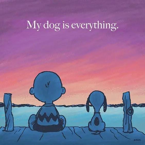 sentimental dog quotes