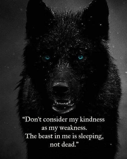 being a lone wolf quotes