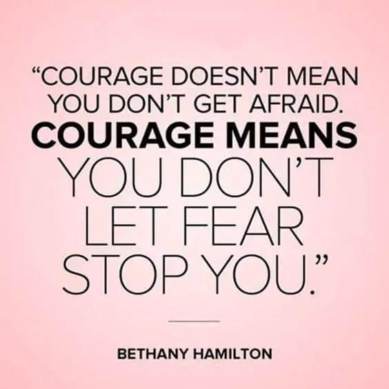hamilton quotes on courage