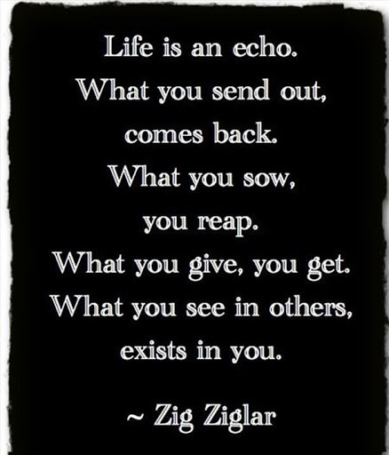 top zig ziglar quotes
