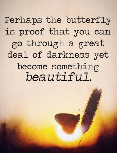 butterfly quotes about change
