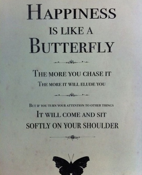 butterfly quotes about happiness