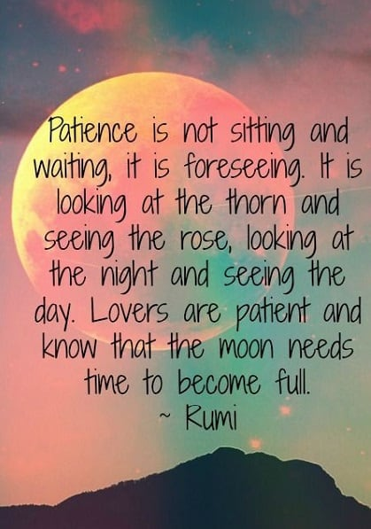 157 Exclusive Rumi Quotes To Broaden Your Perspective Bayart