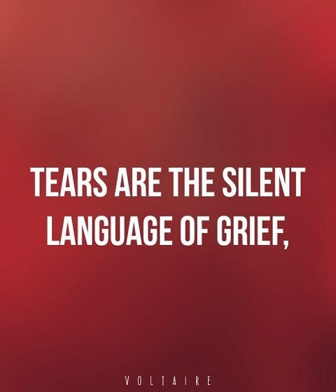 voltaire quotes on tears and grief