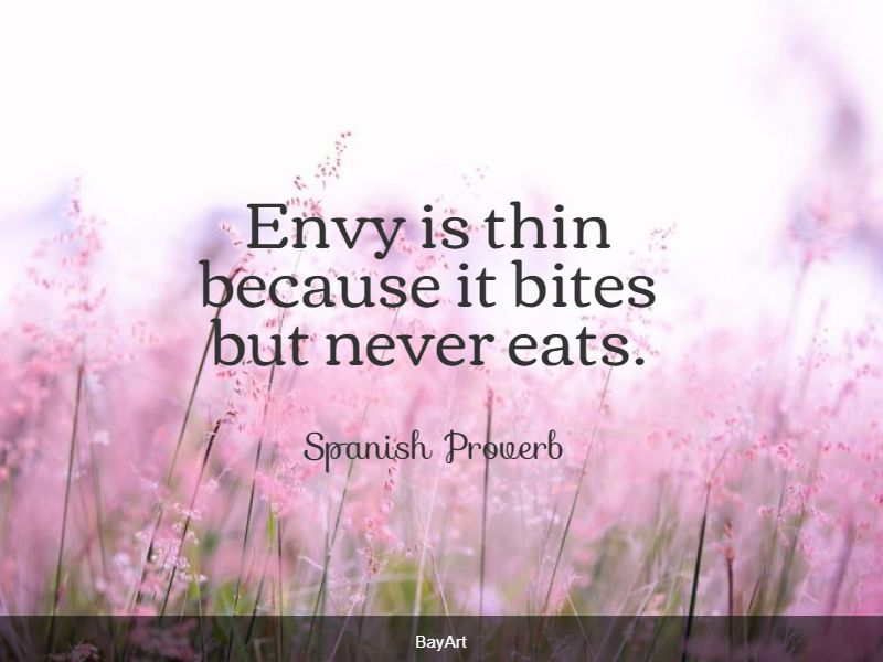 quotes on envy