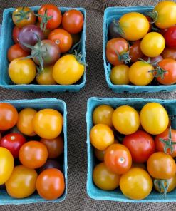 pint containers of red, yellow, and orange cherry tomatoes