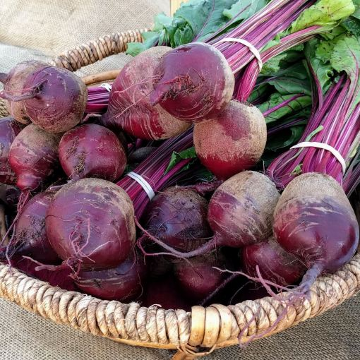 red beets in a basket