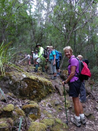On the track to Bivouac Bay coastal and cliff walk