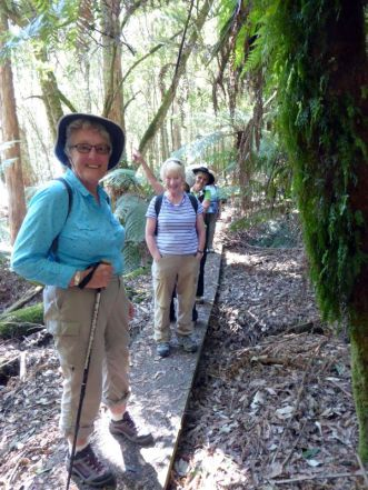 Gillian, Sarah and Helen on track to Westmorland Falls in Mole Creek Karst National Park