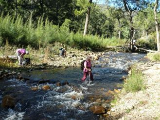 Pat wading across the junction of Micalong Creek and Goodradigbee River