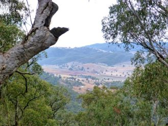 View of Wee Jasper valley