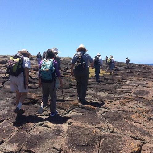 Walkers climbing over a rock platform
