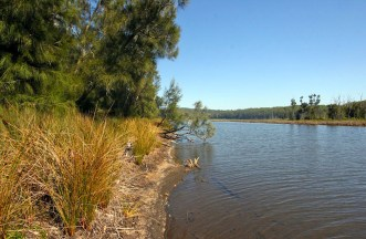 A tranquil Meroo Lake Backwater