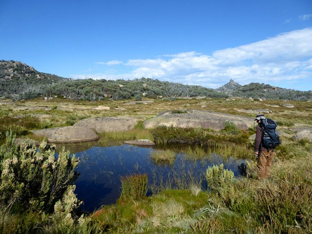 John at pond on Dicksons Falls Walk