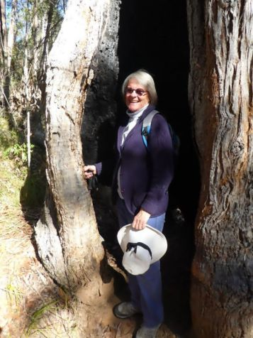 Jane tries out hollow tree for size