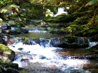 Deua River in full flow over polished stones and rocks.