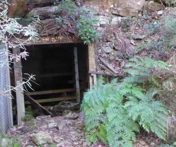 Kellys Mine