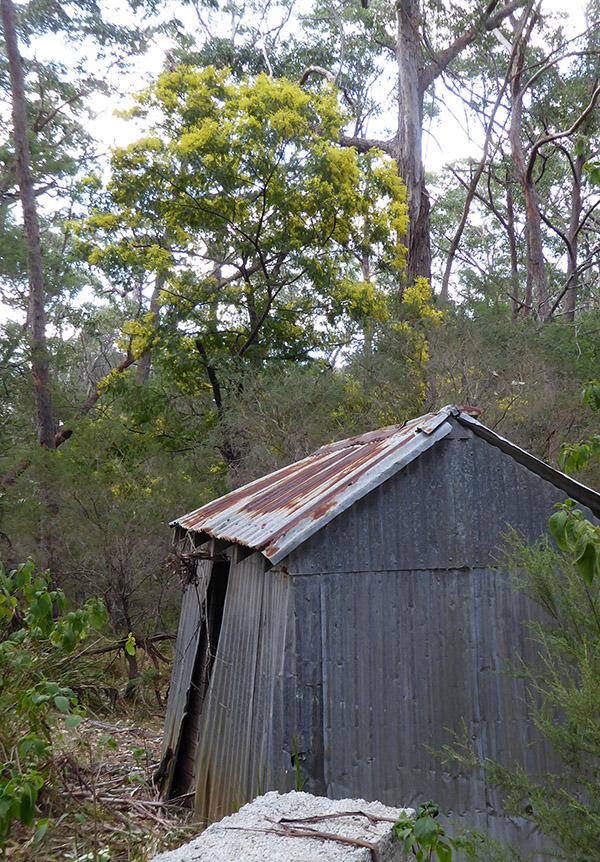Old tin shed where explosives were stored.