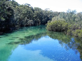The clear waters of Candalagan creek.