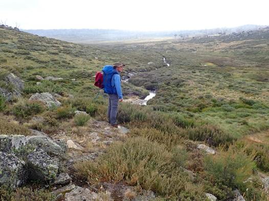 Ian surveys Doubtful Creek Valley.