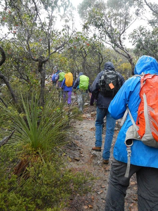 A wet ascent to Mount Sturgeon.