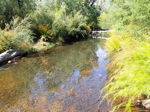 River at Zumsteins