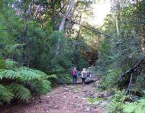 Deua NP creek