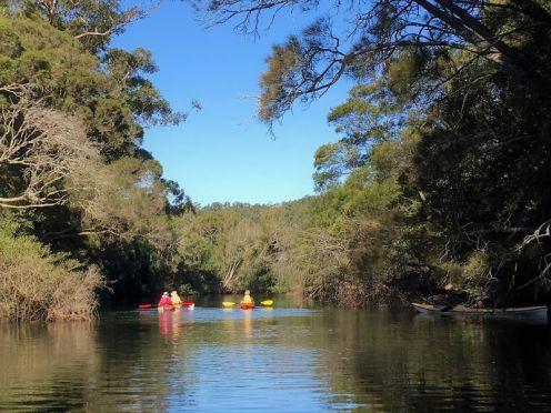 Entering Cabbage Tree Creek