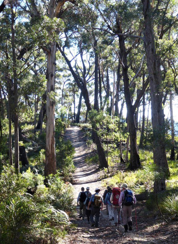 Walking up Bolaro Mountain