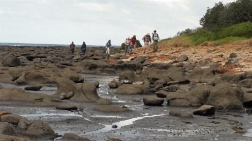 Low tide on the Island rock platforms