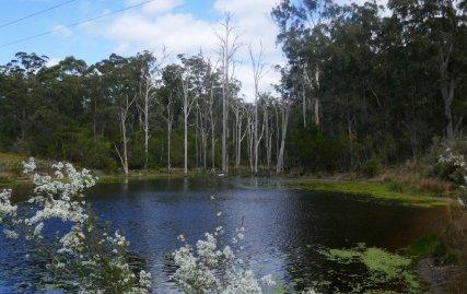 Private dam