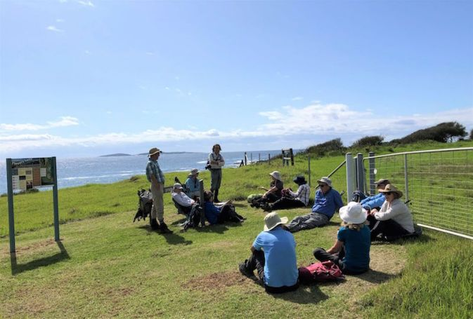 Morning tea at Bogola Head overlooking Montague Island