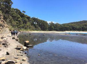 Leaving rock platforms for Depot Beach
