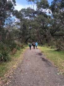 Broulee bush track