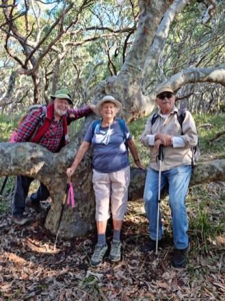 Bob, Ainslie and Simeon on a horizontal tree branch