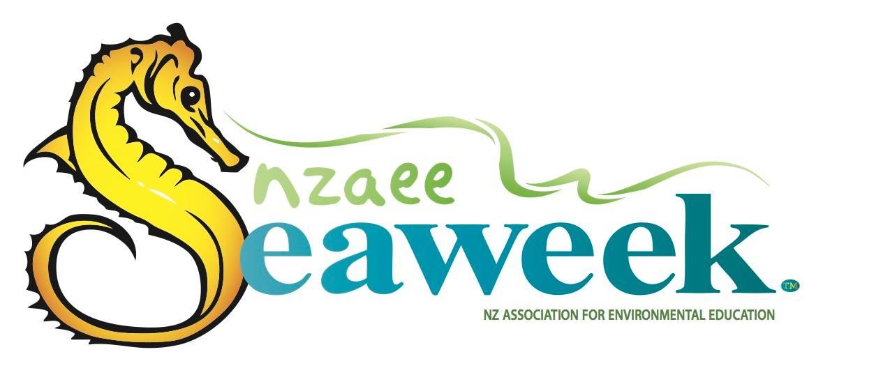 NZ Sea Week Clean-up