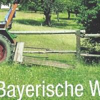 Der Jahreskreis im Bayerischen Wald - Kalender 2009 vom BAYERWALDTEAM