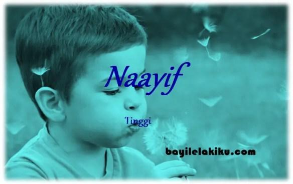 arti nama naayif