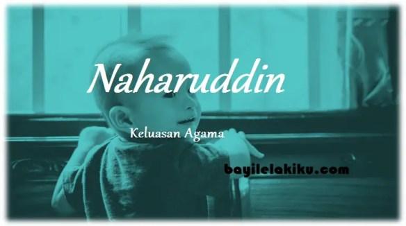 arti nama Naharuddin