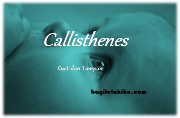 arti nama Callisthenes